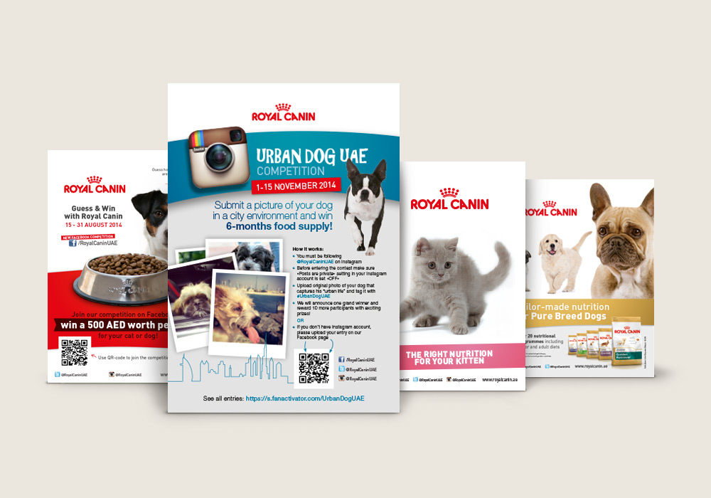 flyers Royal Canin