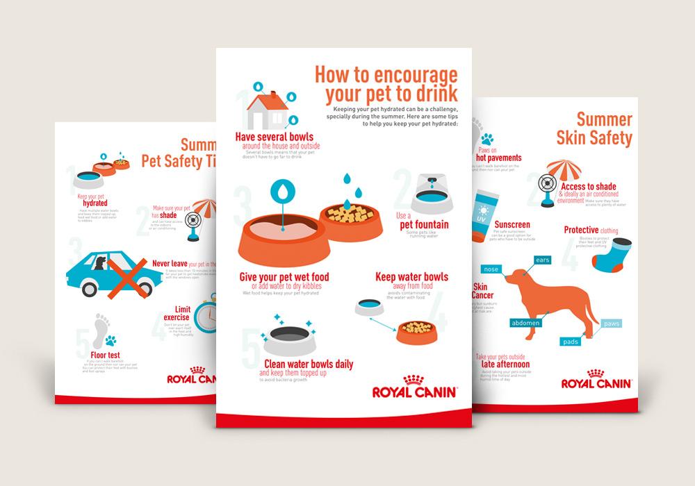 infographies thématiques Royal Canin