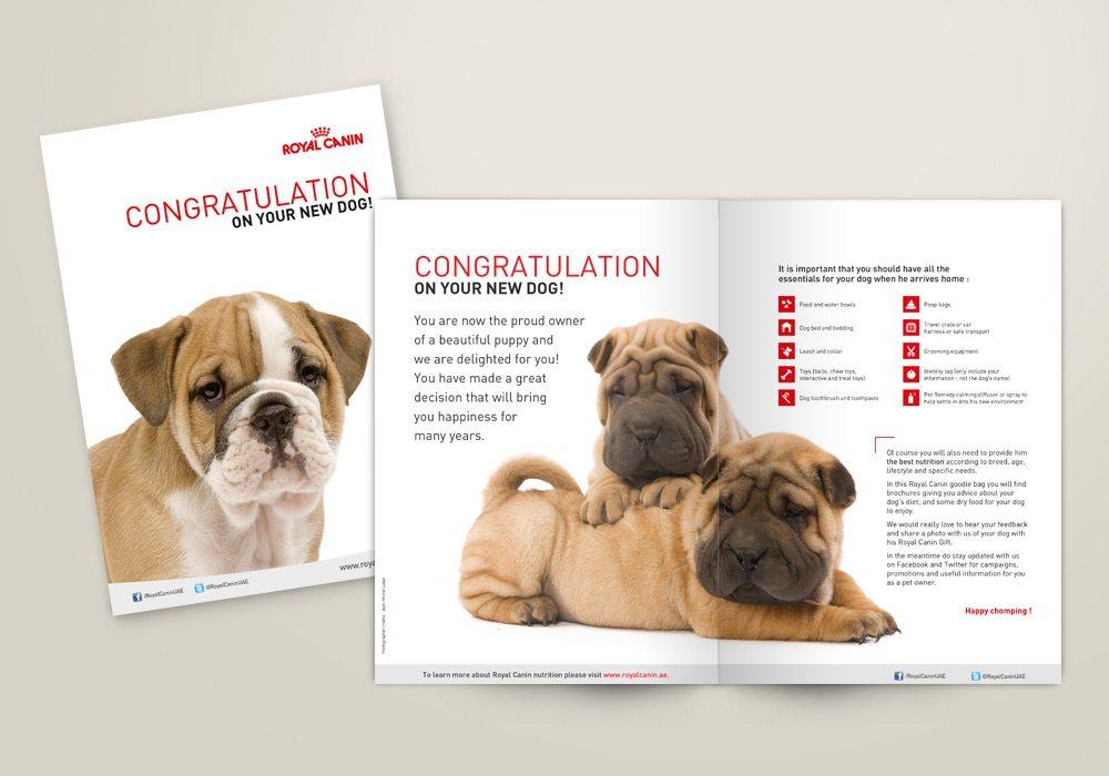 Dépliant chiot Royal Canin SVG