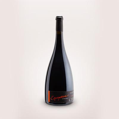 Photographie packshot bouteille de vin Domaine Saint-Julien